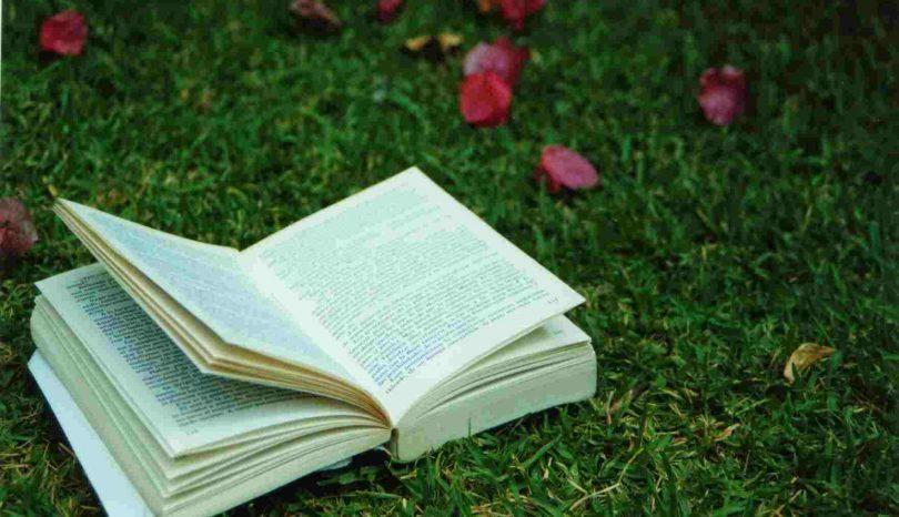 Czytanie w plenerze